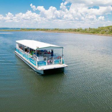 capt. anderson's dolphin cruise panama city fl
